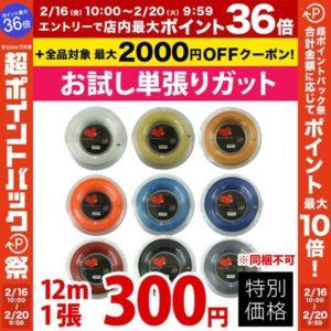 300円ガット